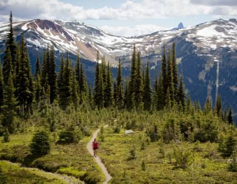 Canada-Whistler-Natuur