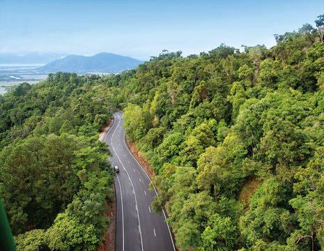 Australie-Atherton-Tablehands-Regenwoud