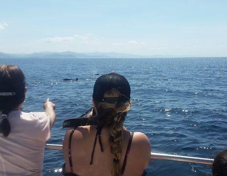 Excursie-Snorkelen-en-dolfijnen-spotten-1(7)
