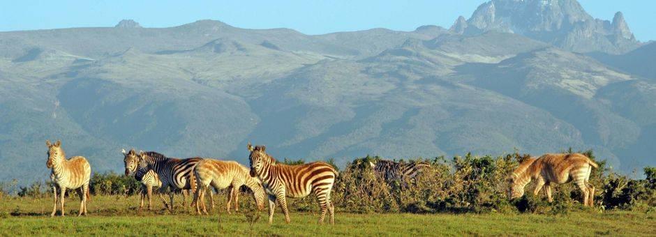 Samburu-Aberdare-Mountkenya_1_374035