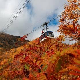 Japan Honshu Tateyama Kurobe Alpine Route