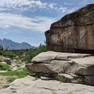 Amerika-Tucson-Saguaro-NP-3
