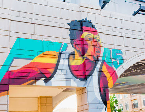 Verenigde-Staten-Rockies-Salt-Lake-City-muurschildering