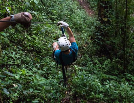 Monteverde-1-Canopy_1_337077
