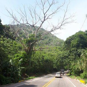Onderweg naar het Tayrona National Park