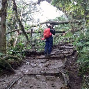 Tanzania-Kilimanjaro-Lopen