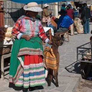 Kleurige-locals-lopen-hier-rond-met-alpacas(10)