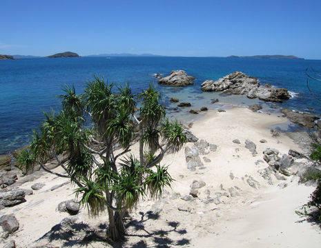 Australie-Great-Keppel-Island-zandstrand