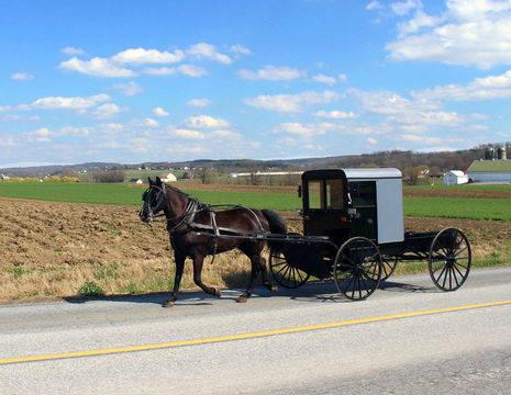Amerika-Lancaster-Amish-Paard-en-Wagen-1