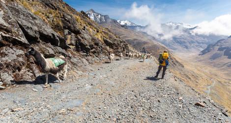 El Choro Trekking door de bergen - Bolivia