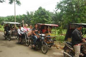Bukit Lawang: Ecotour per gemotoriseerde betjak