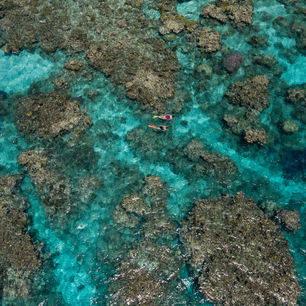 Australie-Great-barrier-reef-snorkelen-5