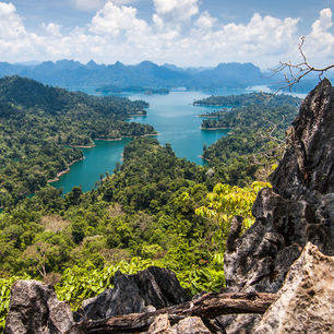 Thailand-Khao-Sok-jungle1