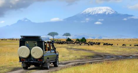 Kenia-Masai-Mara-Gamedrive