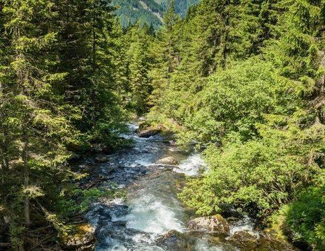 Amerika-White-Mountains-Waterval