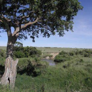 Kenia-Masai-Mara-Uitzicht_1_390709