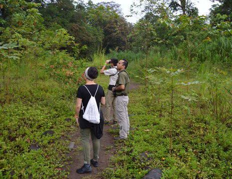 Selva-Verde-Lodge-Birdwatching-tour-4(8)