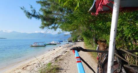 Lombok-Gili-Meno-Paard