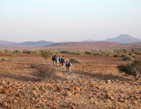Namibie-Palmwag-Wandeling(8)
