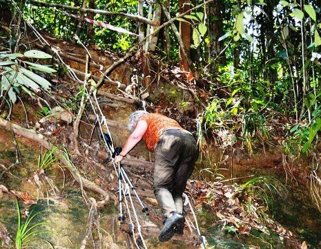 Sarawak-Damaibeach-jungle trekking_3