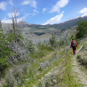 Parque-Patagonia-Hiken_1_430174