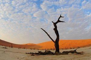 Bouwstenen Afrika