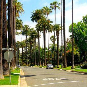 Los-Angeles-Beverly-Hills3