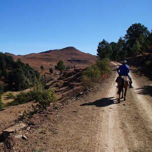 Zuid-Afrika-Drakensbergen-Paardrijden