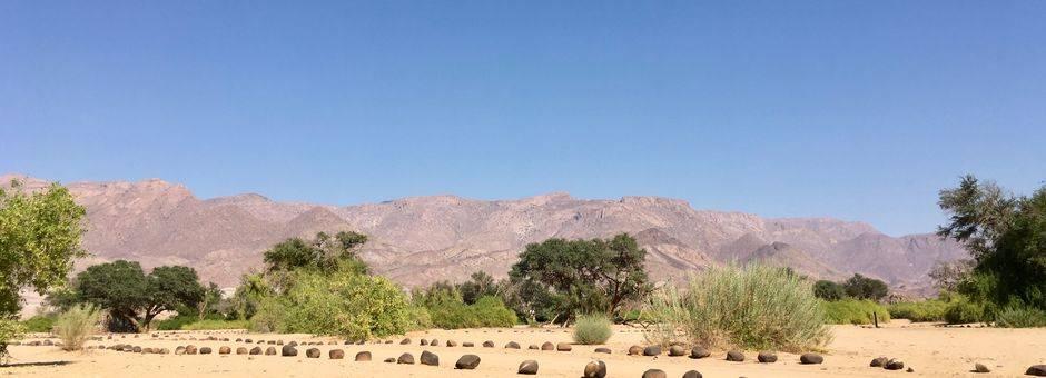 Namibie-Brandberg-Vlakte