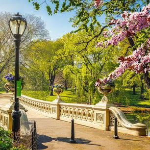Amerika-New-York-Central-Park-Bow-Bridge_2_508109