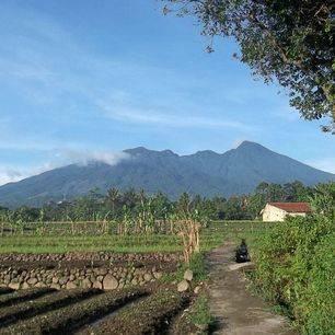 Indonesie-Java-Bogor-Mount-Salak