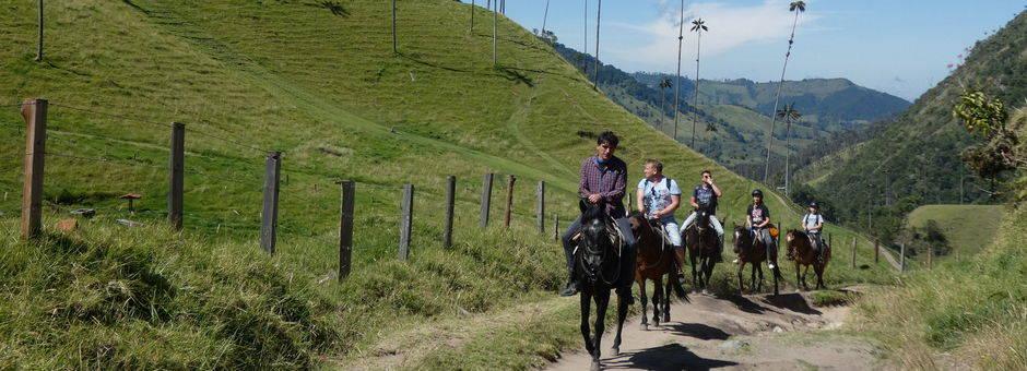 Colombia-Valle-de-Cocora-paardrijden1_1_484347
