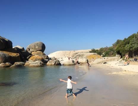 Zuid-Afrika-Boulders-Beach-5