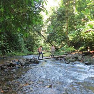 Costa-Rica-Corcovado-National-Park-1(3)