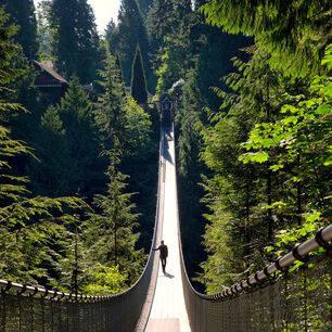Vancouver-Capilano-Suspension-Bridge-Wandeling
