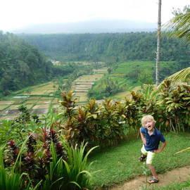 Kleuter bij de rijstvelden van Bali, Indonesië