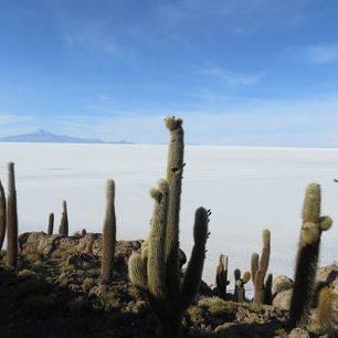 Uitzichten-zoutvlakte-Uyuni-Bolivia