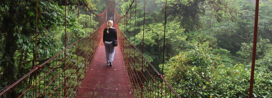 Hangbrug-Monteverde-2(11)