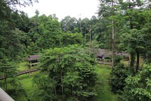 Kawag Danum Rainforest Lodge