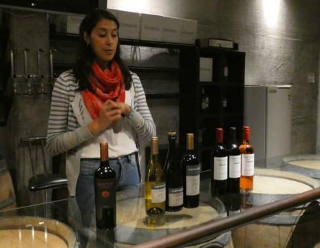 Argentinie-Mendoza-wijnproeverij