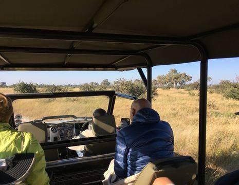 Botswana-Savuti-Jeepsafari_1_365409