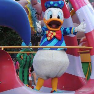Amerika-Florida-Disney-Donald_2_519391