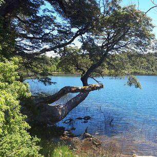 Chili-Puyehue-meer