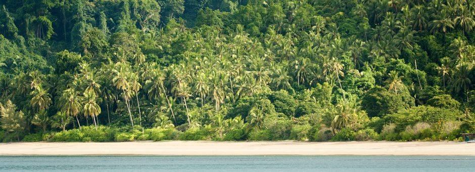 Tioman-palmbeachcoastline(13)