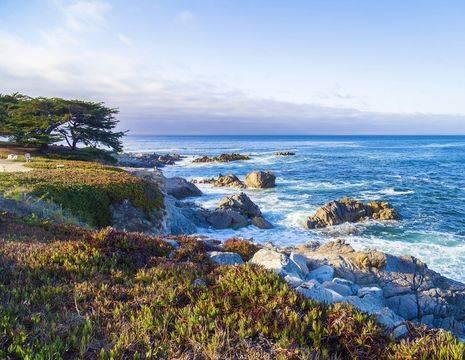Amerika-Monterey-Bay(2)