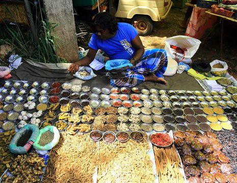 Sri-Lanka-Habarana-Markt2