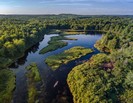 Canada-Charlottetown-natuur-bossen
