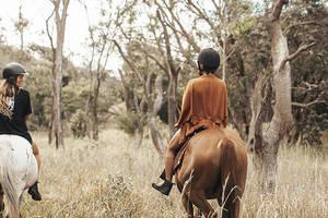 Paardrijden Forest to Beach
