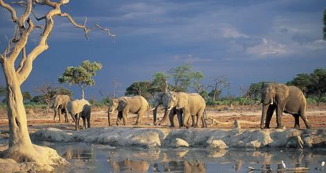 100 Wetlands & Deserts