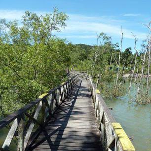 Sarawak-Bako-brug_1_427361
